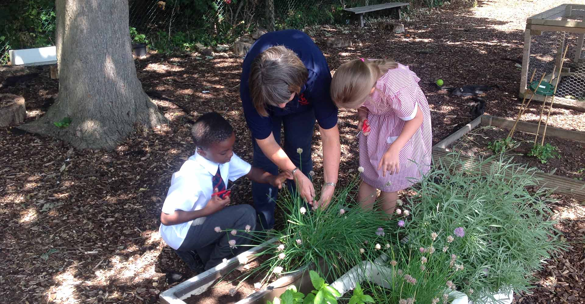 Life at Sacred Heart Catholic Primary - Roehampton